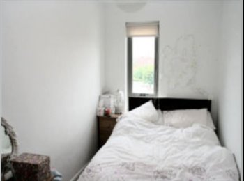 Rooms For Rent For Couples Room For Couples In A Flatshare In