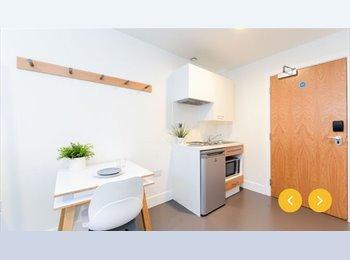 Roo Uk Studio With Good Location Birmingham 100 Pcm