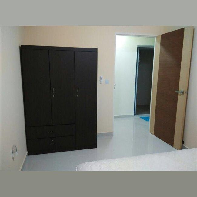 Room For Rent In Pasir Ris Street 51 Pasir Ris D15 18