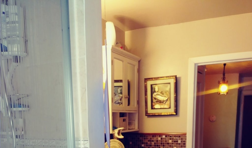 Room For Rent In Selover Road Queens Furnish Master Bedroom For Rent