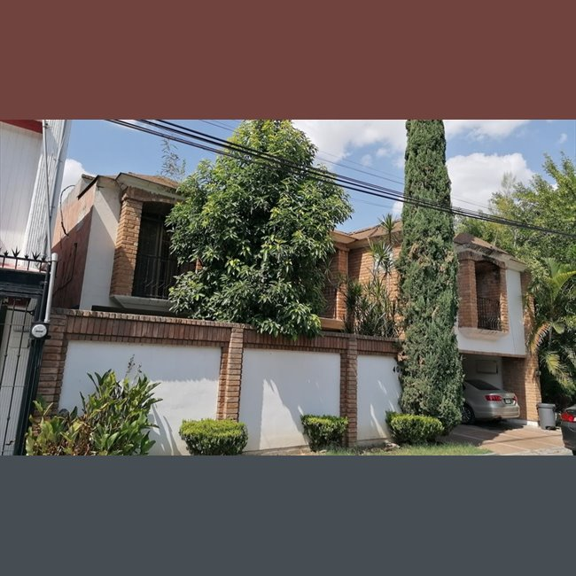 Colonia del Valle- Av. Humberto Lobo, San Pedro Garza ...